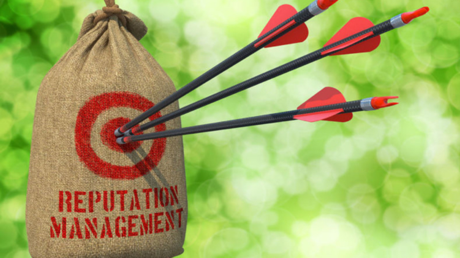 29751937 - reputation management  - three arrows hit in red target on a hanging sack on green bokeh background